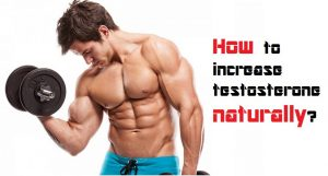 how to increase testosterone level